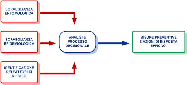 processo-decisionale-oms